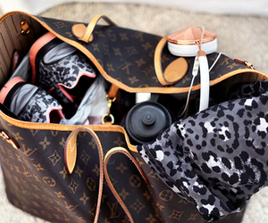 bag, Louis Vuitton, and classy image