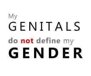 equal rights, lgbtq, and trans image