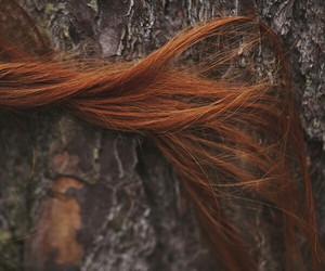 hair, tree, and ginger image