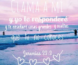 bible, frases, and life image