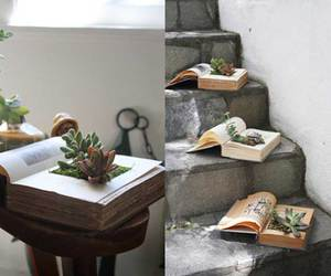 books, flower pot, and nature image