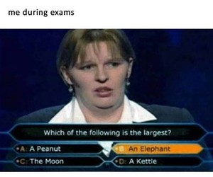 funny and exam image