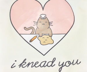 bread, cat, and i image