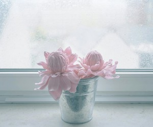 flower, tumblr, and pastel image