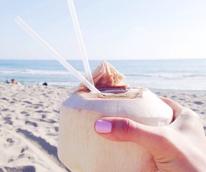 summer, beach, and food image