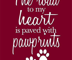 dog, heart, and paws image