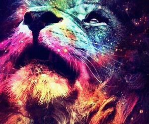lion and colors image