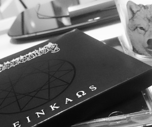 Black Metal, dissection, and wolf image