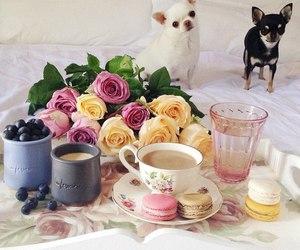 flowers, coffee, and dog image