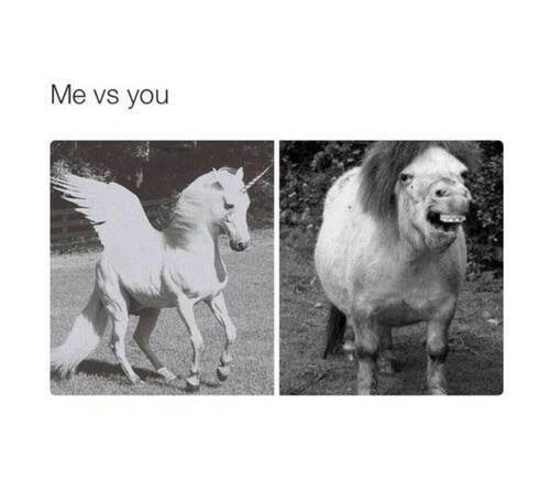 funny, unicorn, and lol image