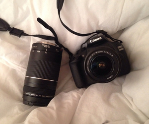 camera and lenses image