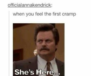 funny, tumblr, and parks and recreation image