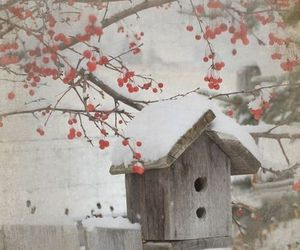 snow, winter, and birdhouse image