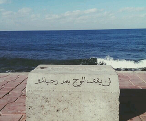 arabic, ﻋﺮﺑﻲ, and عربي image