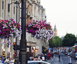 flowers, city, and london image
