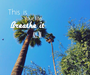 blue sky, palms, and text image