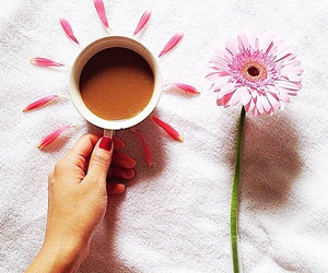 coffee, flowers, and girl image