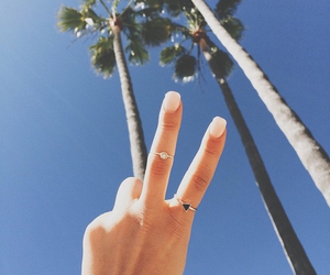 nails, summer, and palm trees image