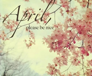 april, flowers, and nice image