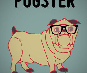 hipster, pug, and pugster image