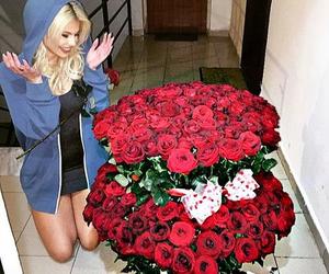 flowers, roses, and luana vjollca image
