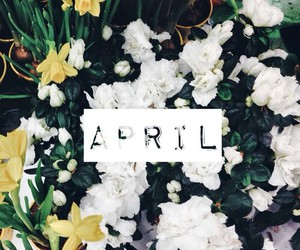 april, beauty, and flowers image