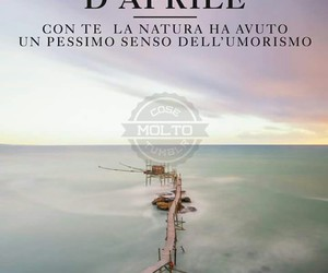 frasi, sea, and umorismo image