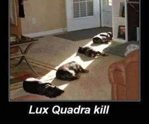 lux image