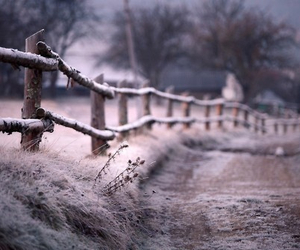 winter, photography, and nature image
