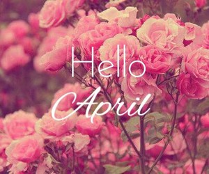 flowers, april, and hello image