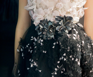 dress, fashion, and Giambattista Valli image