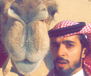 camel and selfie image
