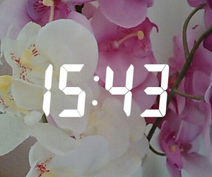 flowers, time, and snapchat image