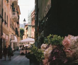 flowers, vintage, and street image