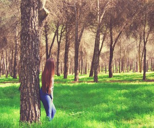 colorful, forest, and girl image