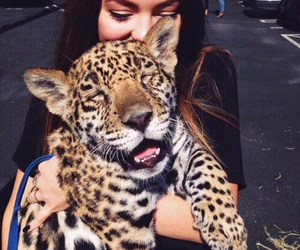 animal, girl, and tiger image
