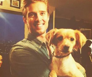 dog, pll, and drew van acker image