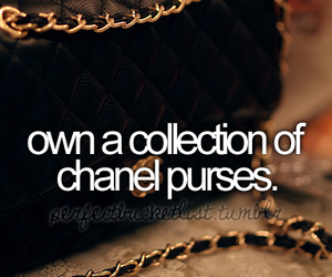 purse, before i die, and chanel image