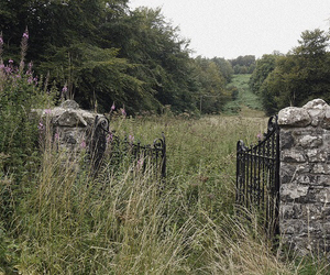 countryside, gate, and history image