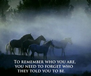 horse, quotes, and remember image