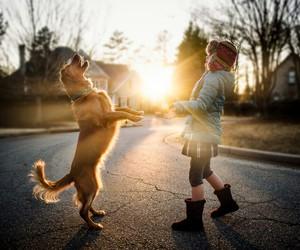 boy, dog, and friendship image