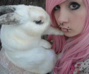 bunny, pink hair, and rabbit image