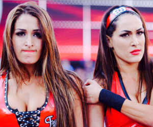 the bella twins, nikki bella, and wwe image