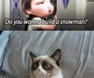 cat, no, and frozen anna image