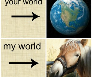 equitation, horse, and My World image