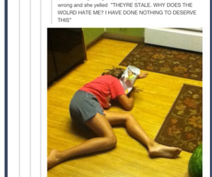 funny, tumblr, and watermelon image