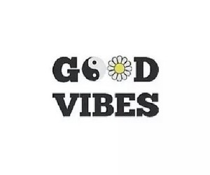 vibes and goodvibes image