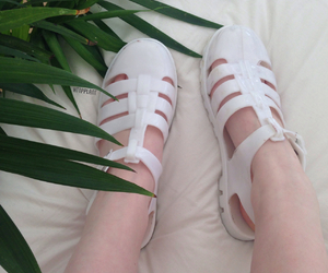 plants, shoes, and tumblr image