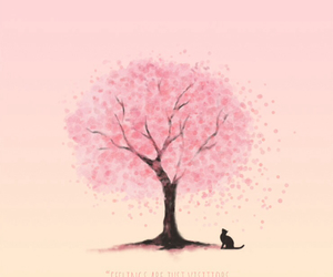 pink, cat, and wallpaper image