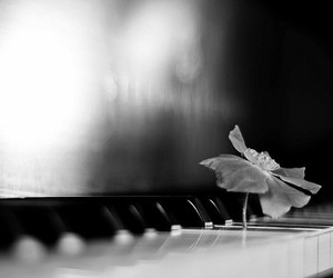 piano and flower image